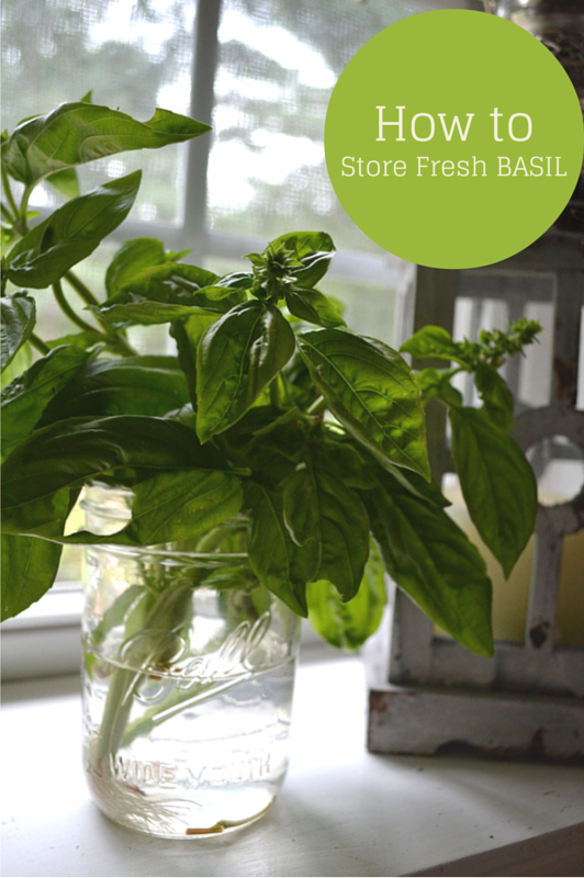 How to Store Fresh Basil from The Healthy Bachelorette